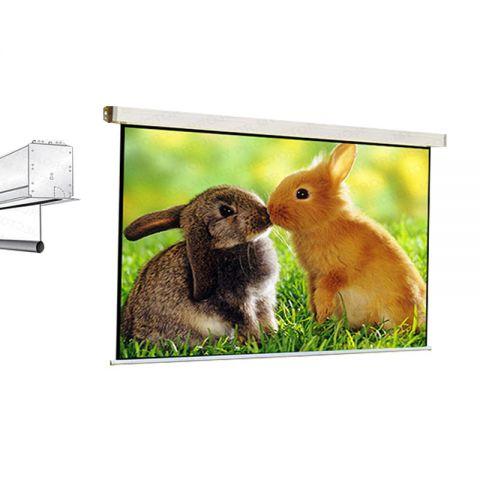 Draper Salara AV Format Motorized Screen WSL 7' x 7'